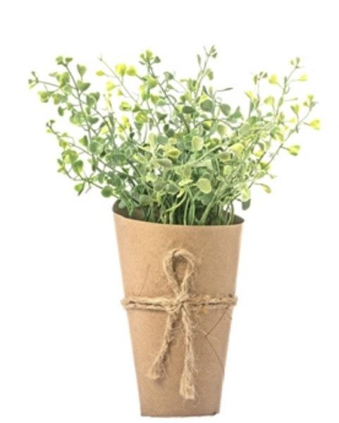 art-plant